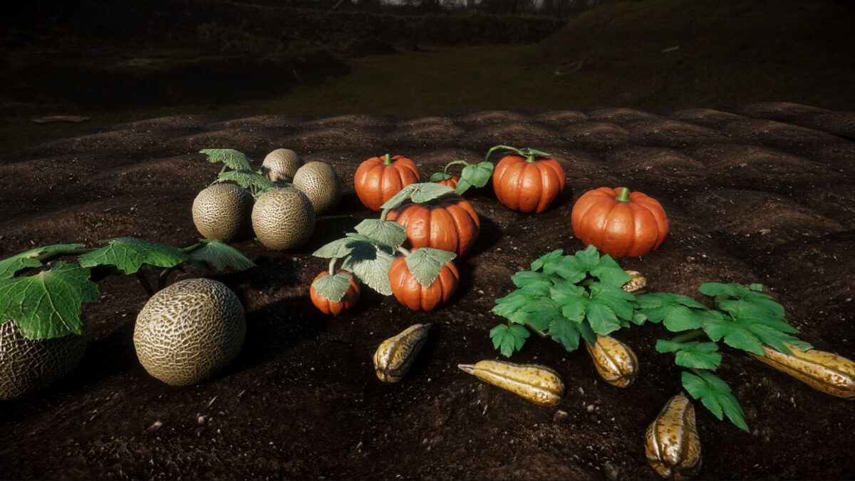 An image showing Garden Vegetables 2. Update asset pack, created with Unity Engine.